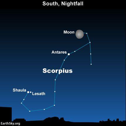 Scorpio Constellation in 2021 | Aquarius constellation