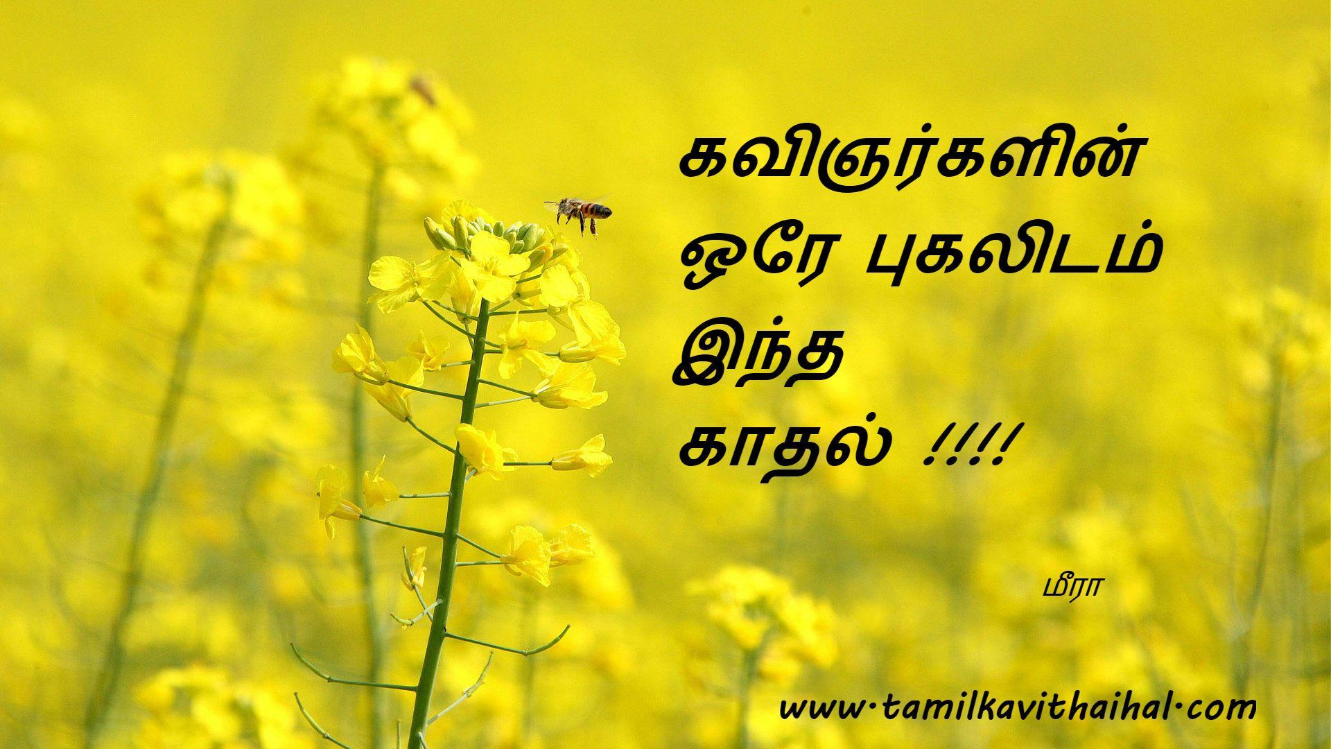 Tamil Kadhal Kavithai Kavingar Pugalidam Kavithaigal Hd Wallpaper
