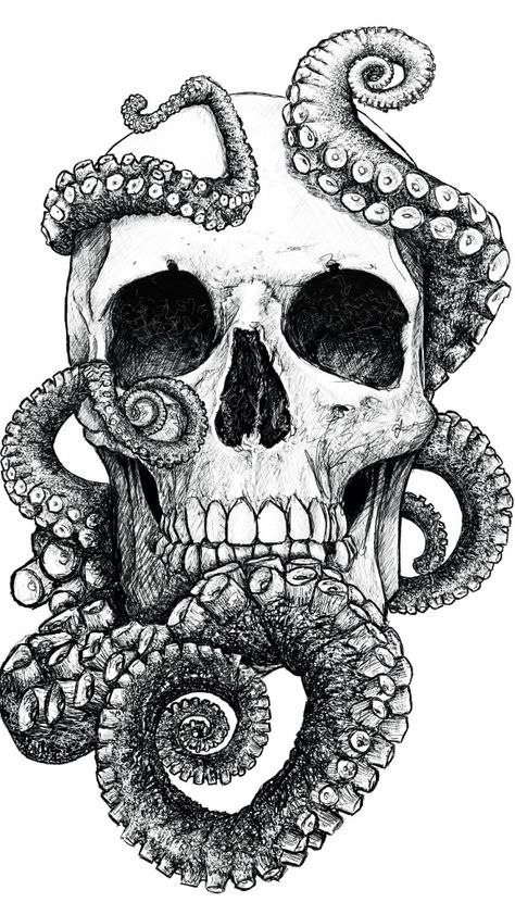 San Francisco By Mr Yarks Skull Octopus Drawing Art