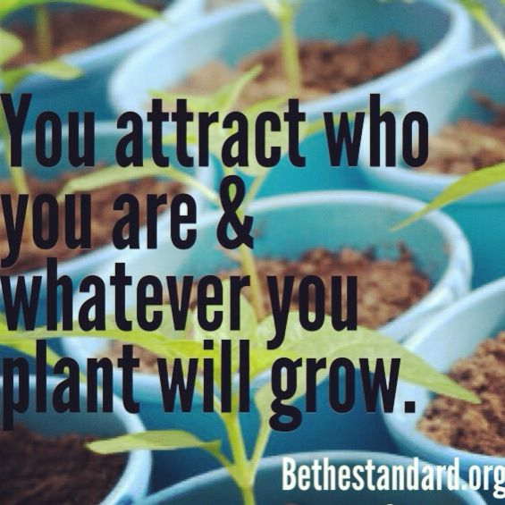 If you believe you don't deserve the BEST in your life, you will always attract the WORST. You attract who YOU are! -Ash Elisé  Bethestandard.org