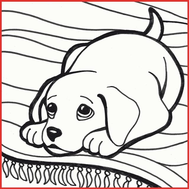 Süße Hundewelpen Ausmalbilder   Kinder Ausmalbilder