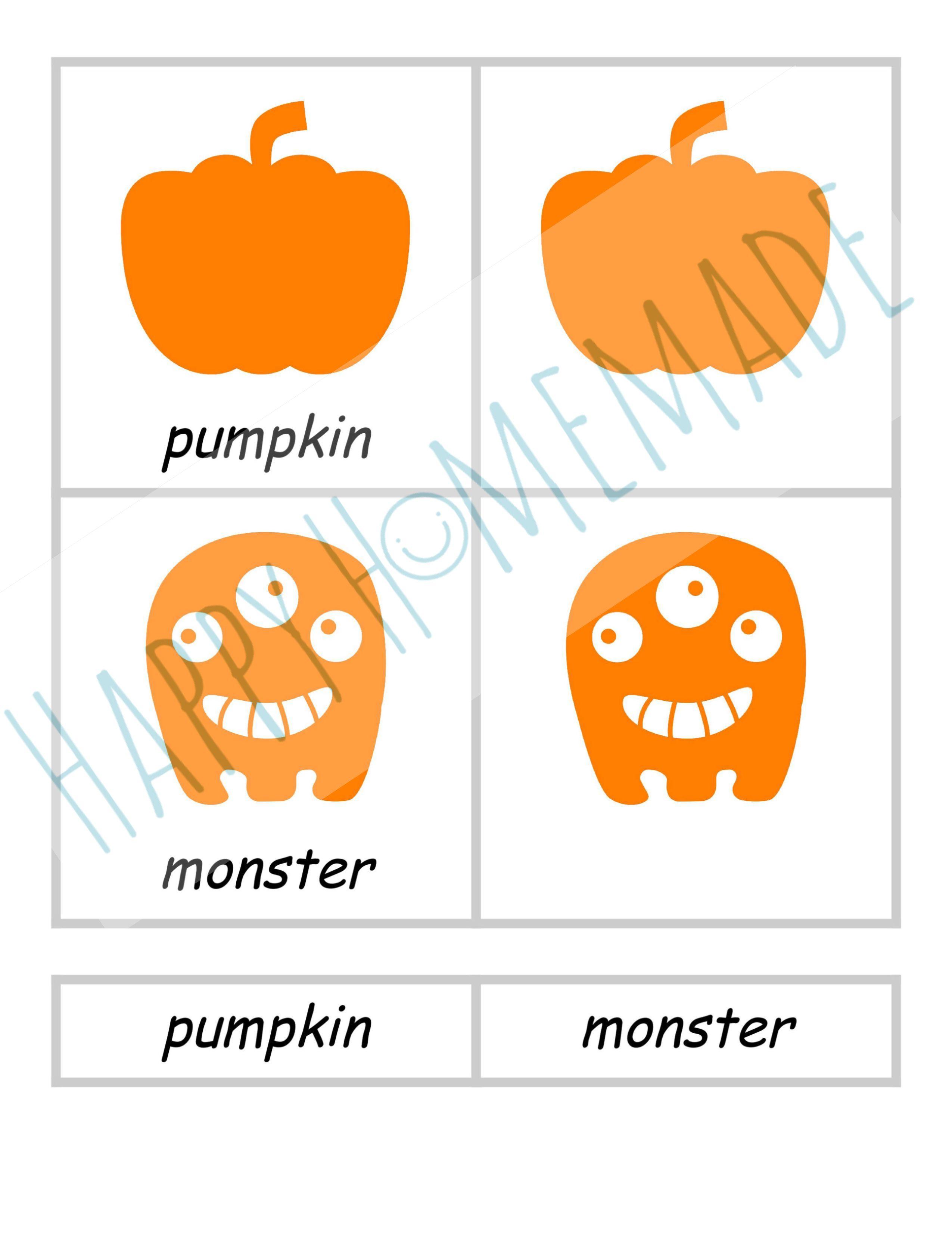 Halloween 3 part cards vocab cards montessori inspired