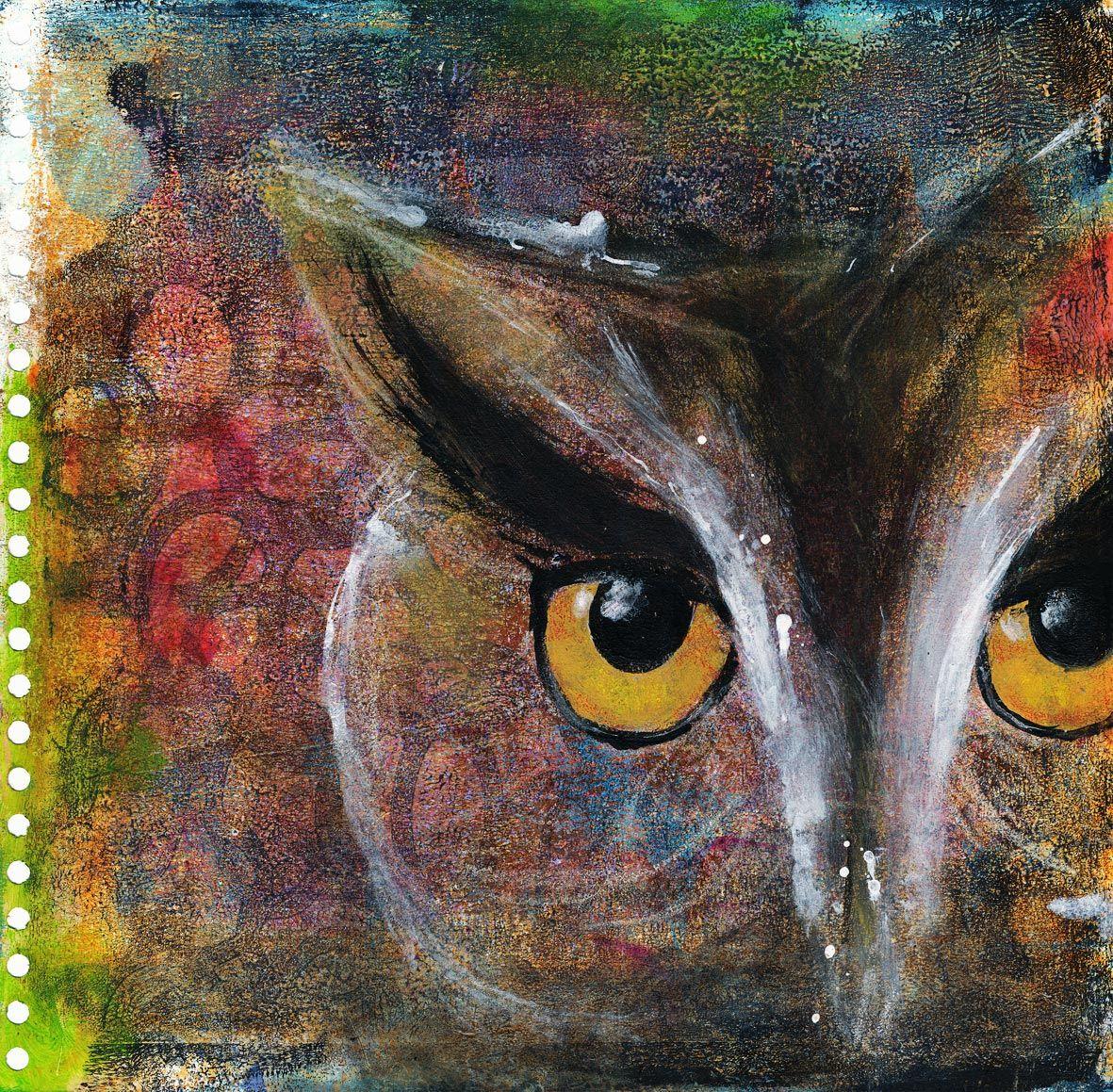 owls  eulen  eule