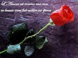 Resultat De Recherche D Images Pour Image Fleur Romantique