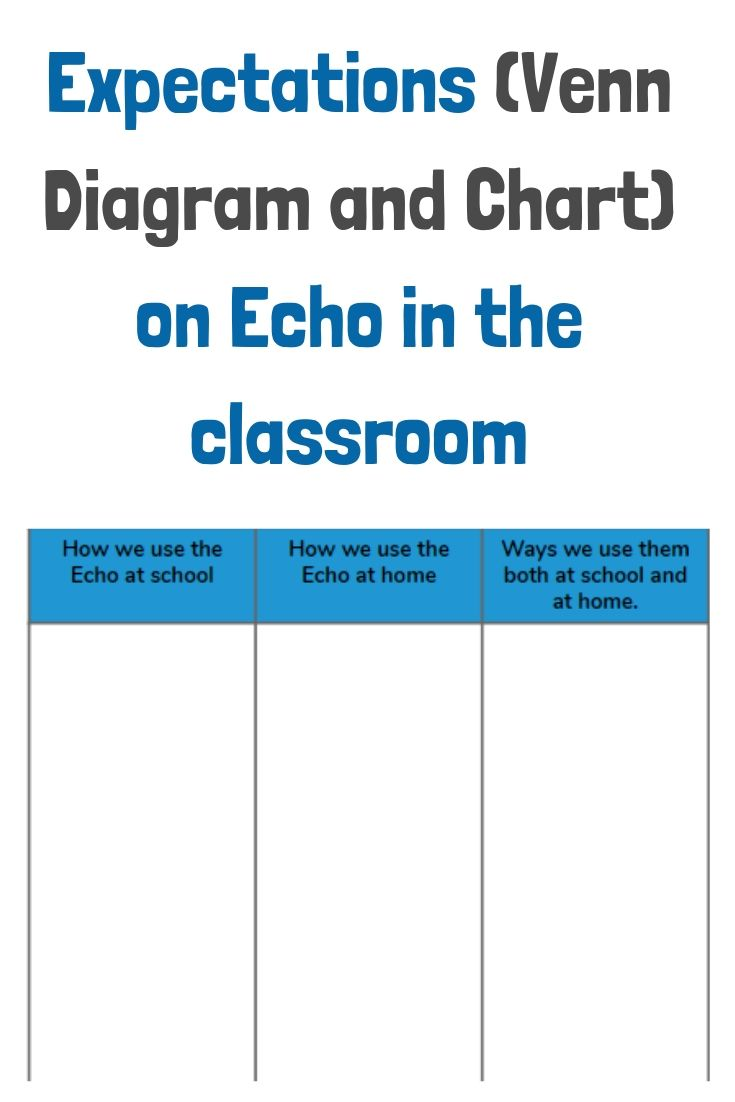 Expectations on using echo in the classroom anchor