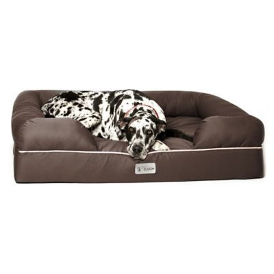 Pleasant Petfusion Jumbo Ultimate Dog Bed And Lounge In Brown Ibusinesslaw Wood Chair Design Ideas Ibusinesslaworg