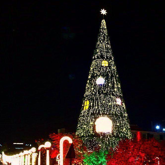 زينة عيد الميلاد في مدينة جبيل اللبنانية يتوافد آلاف اللبنانية إلي هذه المدينة الساحلية لرؤية الزينة والأضواء المنت Holiday Festival Instagram Instagram Posts