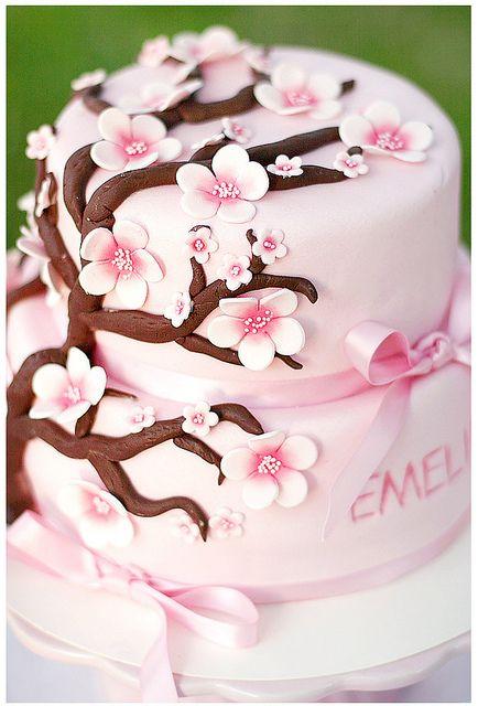 Cake Abdominal fat Cake and Cherry blossom cake