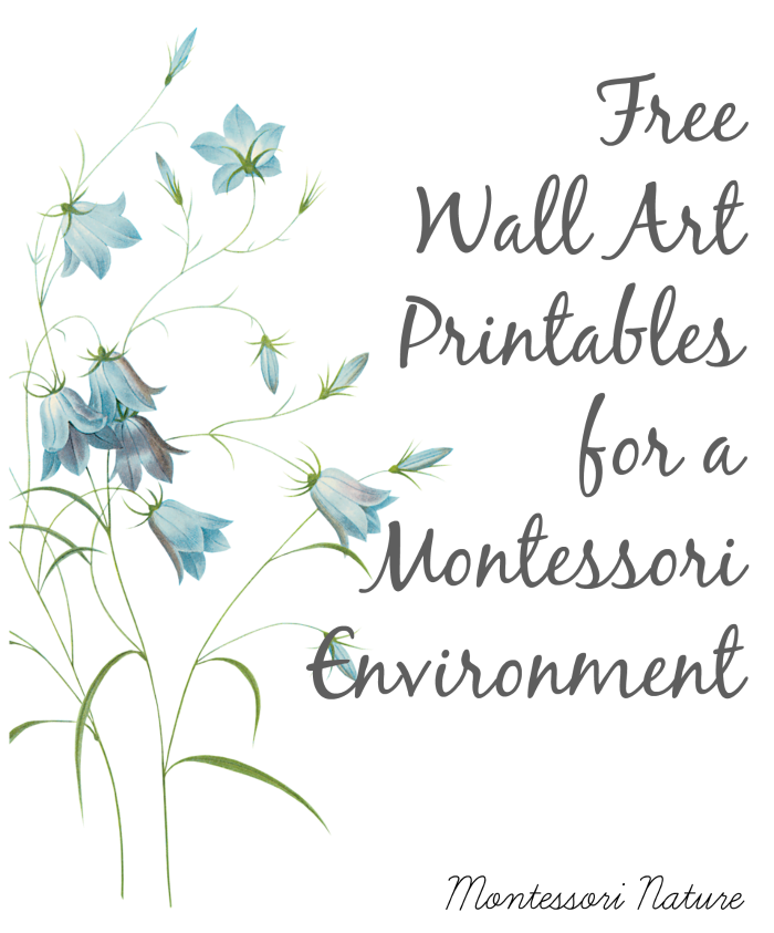 6735128ee67 When entering a Montessori environment you get overwhelmed by peace and  freshness of your surroundings. Most likely…