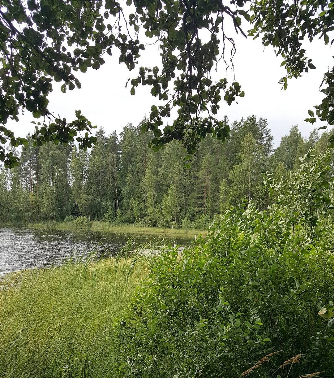 Elokuu ja tuulessa tulevan sateen tuoksu  #elokuu #august #kesä #summer #summerinfinland #seasonsoffinland #luonto #nature #naturelover #landscape  #vieläonkesääjäljellä #lifestyleblogger #nelkytplusblogit #åblogit #ladyofthemess