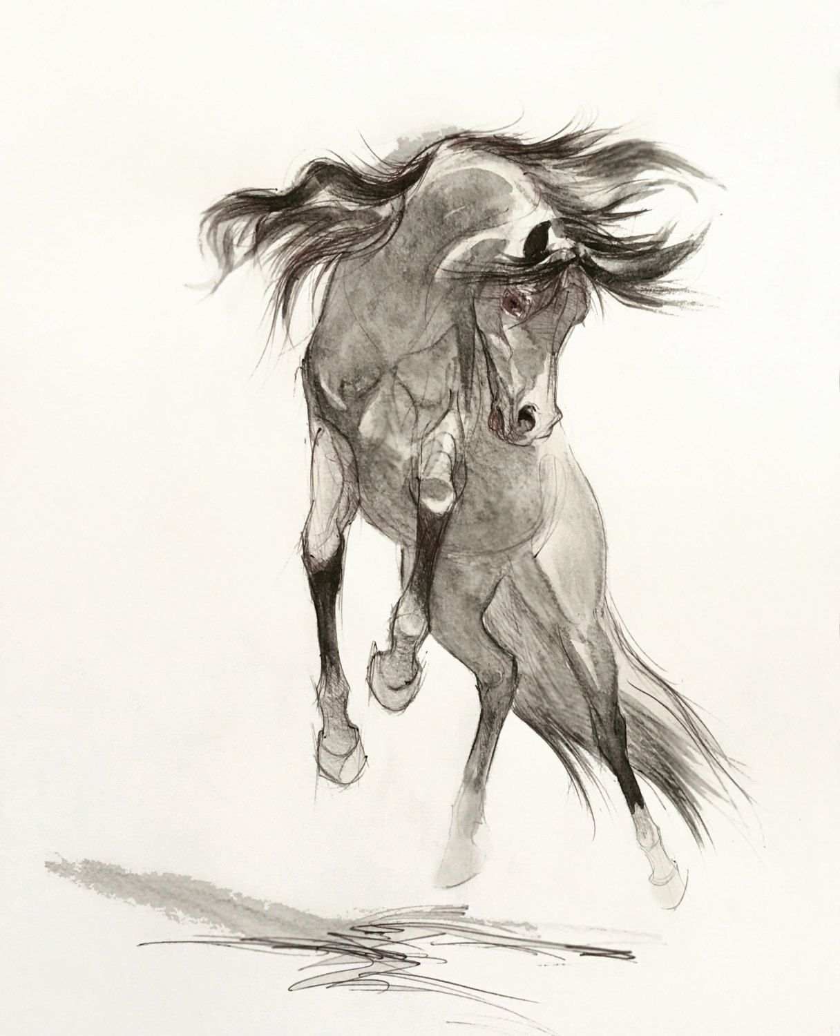 Pencil Horse Drawing Giclee Arabian Horse by SweetPeaAndGummyBear ...