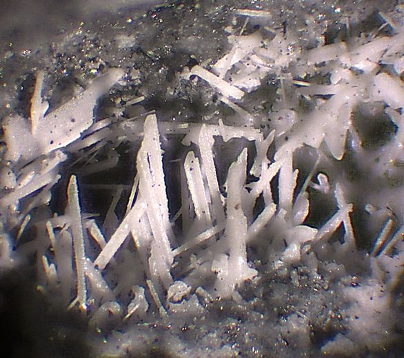 Pseudocotunnite, 2PbCl4,  La Fossa crater, Vulcano Island, Lipari, Eolie Islands, Messina Province, Sicily, Italy. Fov 1,5 mm. Copyright: © Luigi Mattei