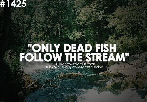 Pin by Breen on Me Dead fish, Streaming