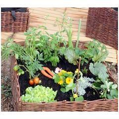 potager carr osier 100cm mon petit potager garden inspiration et garden. Black Bedroom Furniture Sets. Home Design Ideas