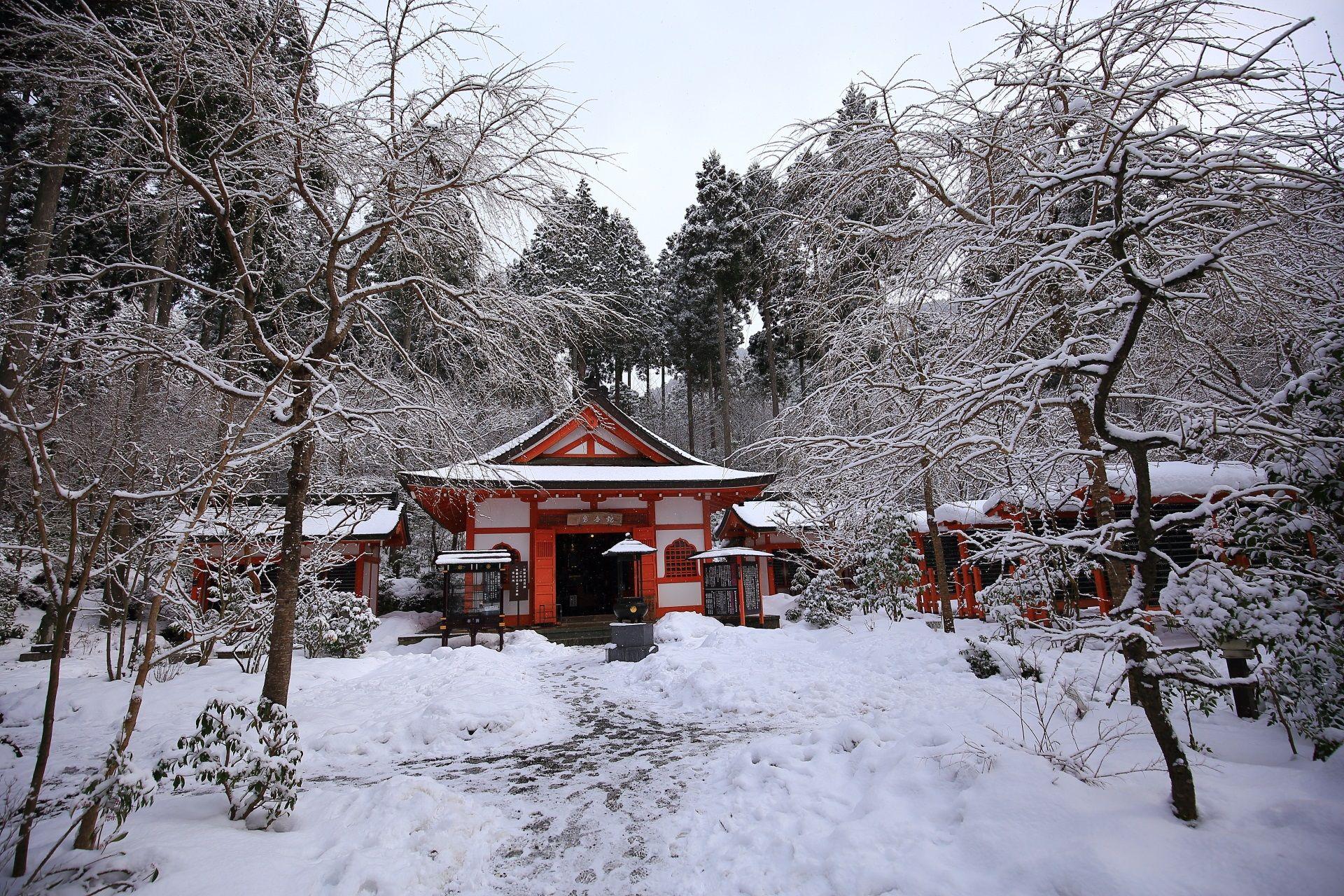 冬の京都三千院の見事な雪景色と観音堂