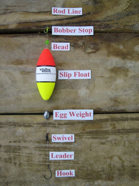 Fishing Tips From Chaisin Tails Outdoors Bait Amp Tackle Shop Atlantic Beach Nc Trout Fishing