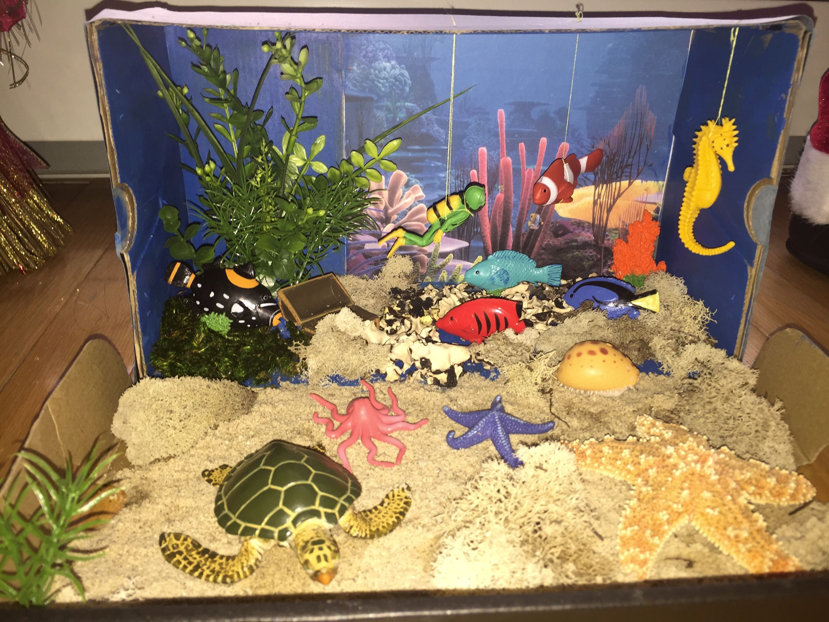Image result for diorama marine biology | 7th/8th grade