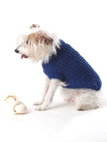 Free Pattern Knit This Dog Coat For Your Favorite Pup Shown In