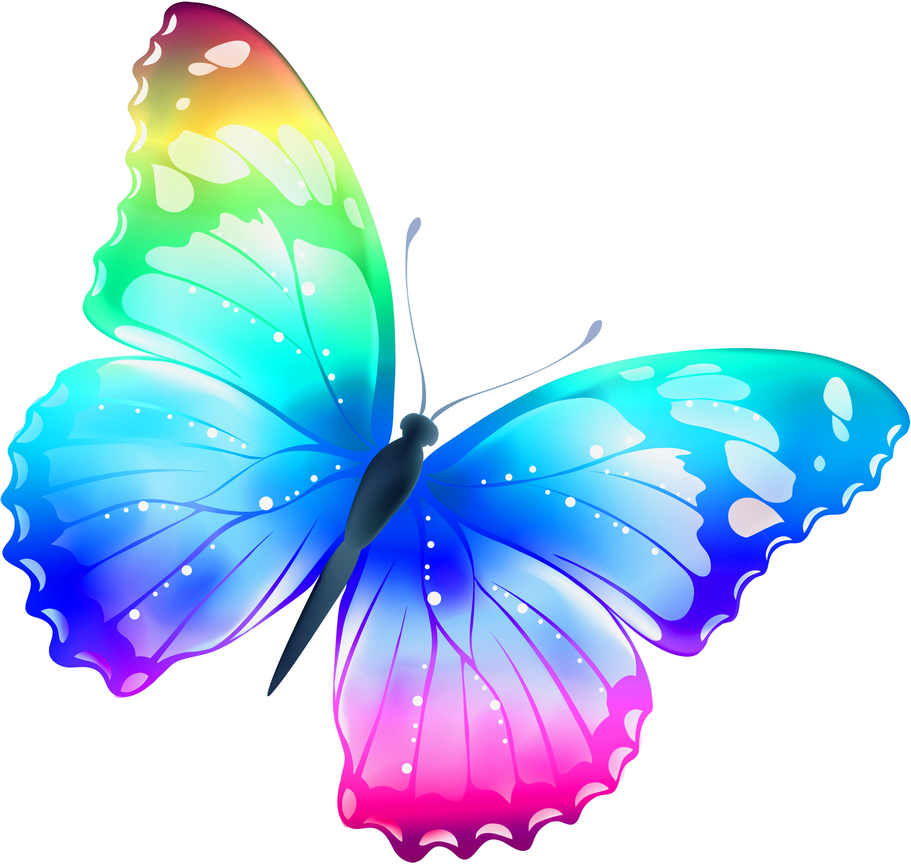 free pictures of butterflies clipart best butterflies rh pinterest com Free Butterfly Clip Art Borders Free Flower Clip Art