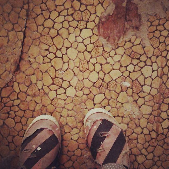 Blogged, 2/3/13, www.gohausgo.com   Impressed with the carpet