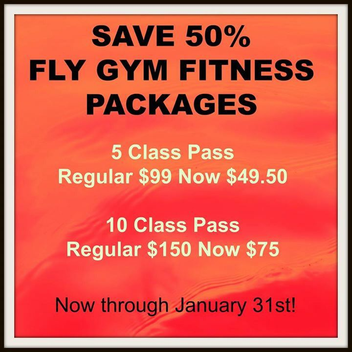 Why Workout When You Can Fly Fly Gym Fitness Has Arrived In