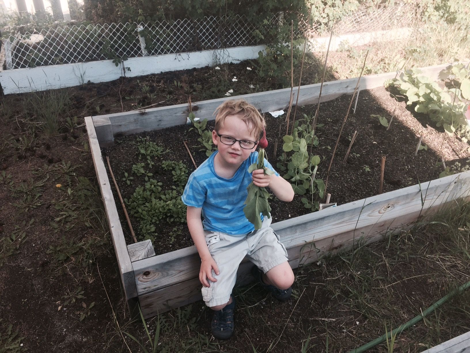 A garden bed all of his own.