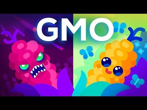 Ted ed on ted ed pinterest biotecnologa biologa y malos teded are gmos bad for your health or is this fear unfounded urtaz Gallery