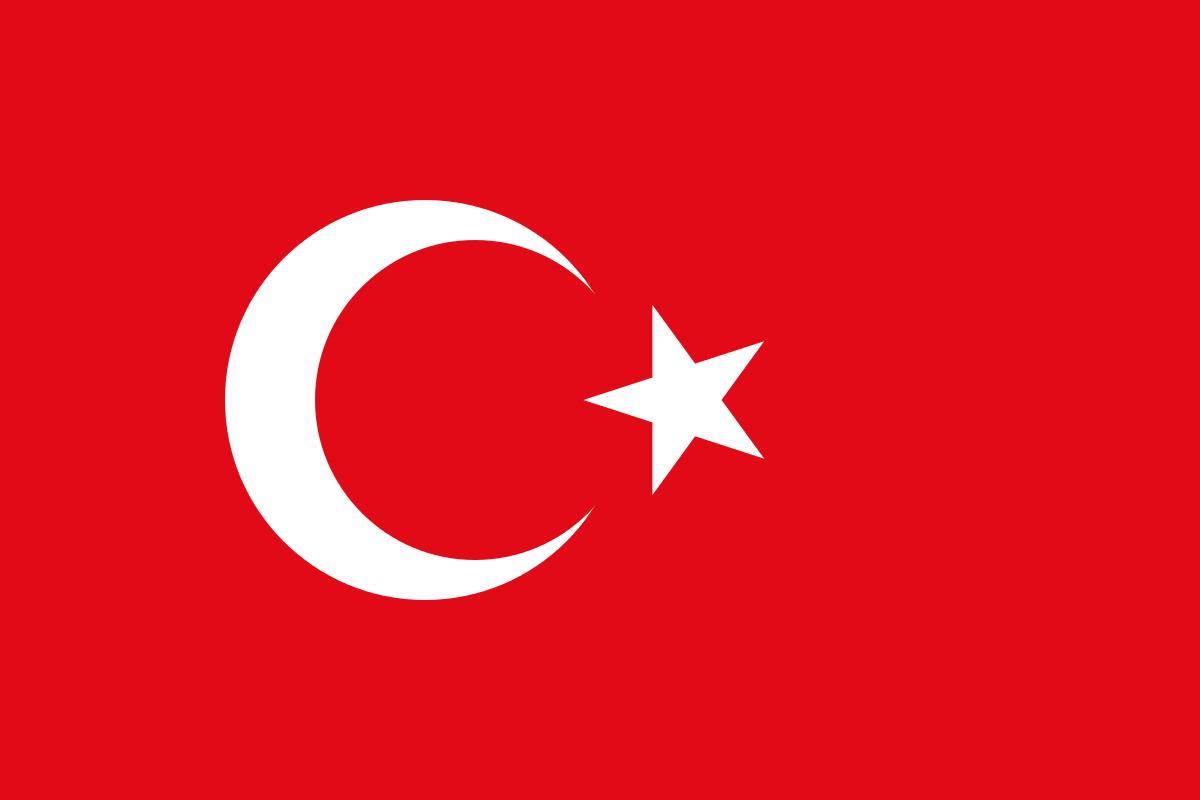 Turkey Flag Hoodies Turkiye Star and Crescent Hooded Sweatshirt 1051C   eBay