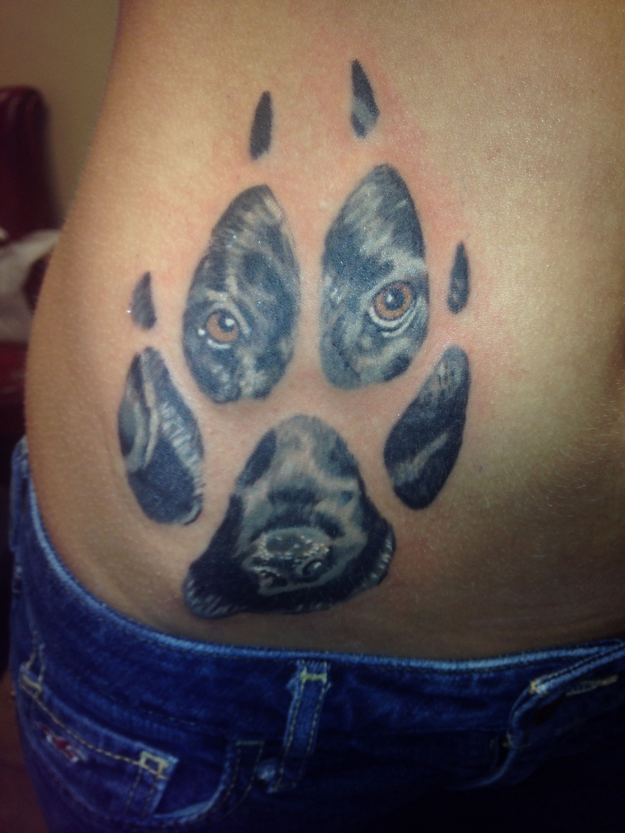 My new tattoo i put my black labs face in the paw print for What do i put on a new tattoo