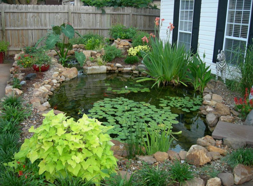 landscape ponds ideas | pools & backyards | pinterest