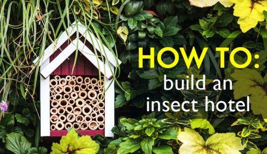 8dfa6c4af5d66c9b7b35d55395e74391 - Why Are Insect Hotels Beneficial To Gardens