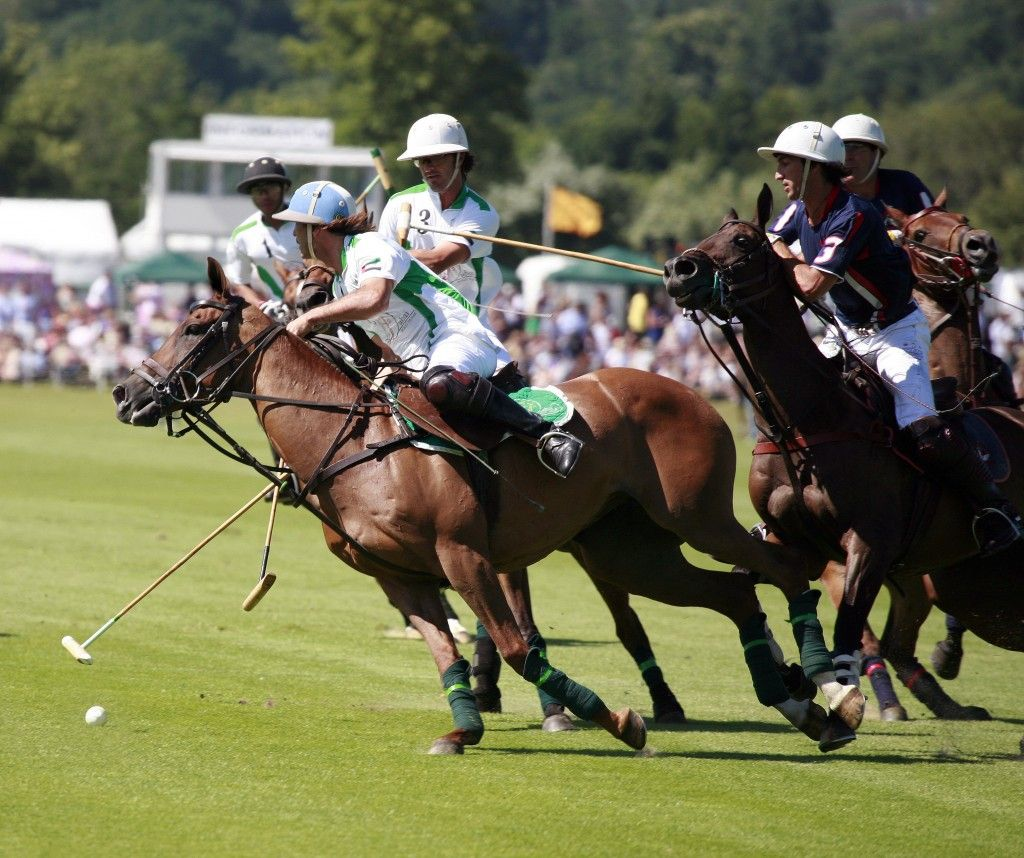 Polo such a classy sport Classy sport, Sport of kings