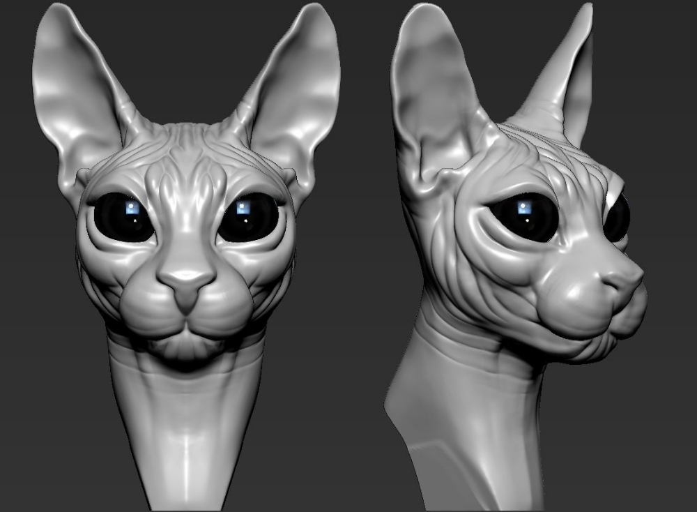 3D print model cats Cat sphynx CGTrader Sphynx, Print