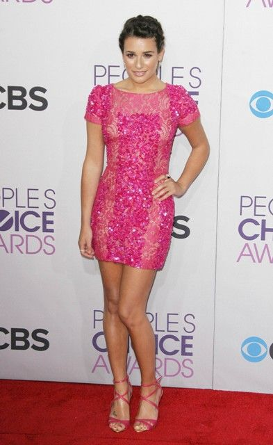 I like this Elie Saab. Lea Michele at the 39th Annual People's Choice Awards