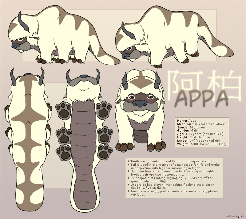 Avatar : Appa Reference Sheet by Nylak on DeviantArt #mamp;mcostumediy