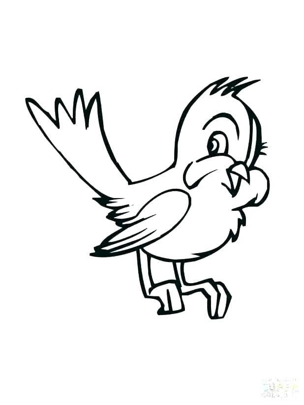 Coloring Page Of Birds Outstanding Coloring Pages Birds Big Bird