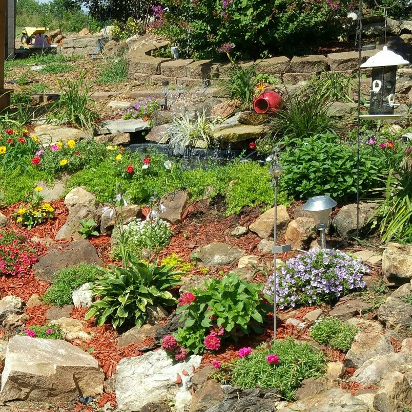 Pin by Sherri Steen on My creations! | Native plants, High ...