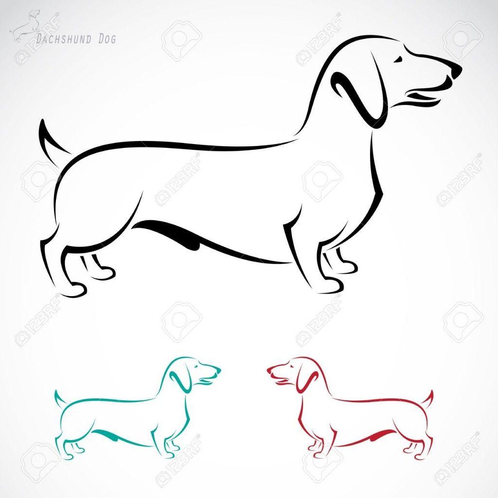 Pin En Perros Salchichas