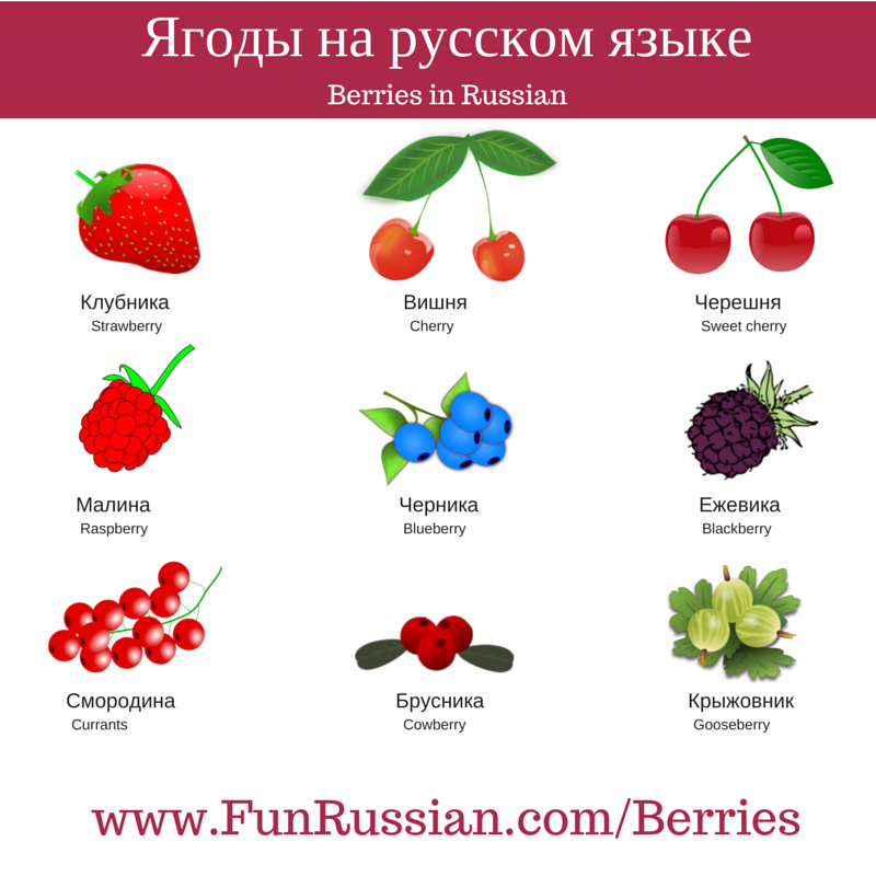 Berries in Russian