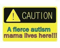 Fierce autism momma