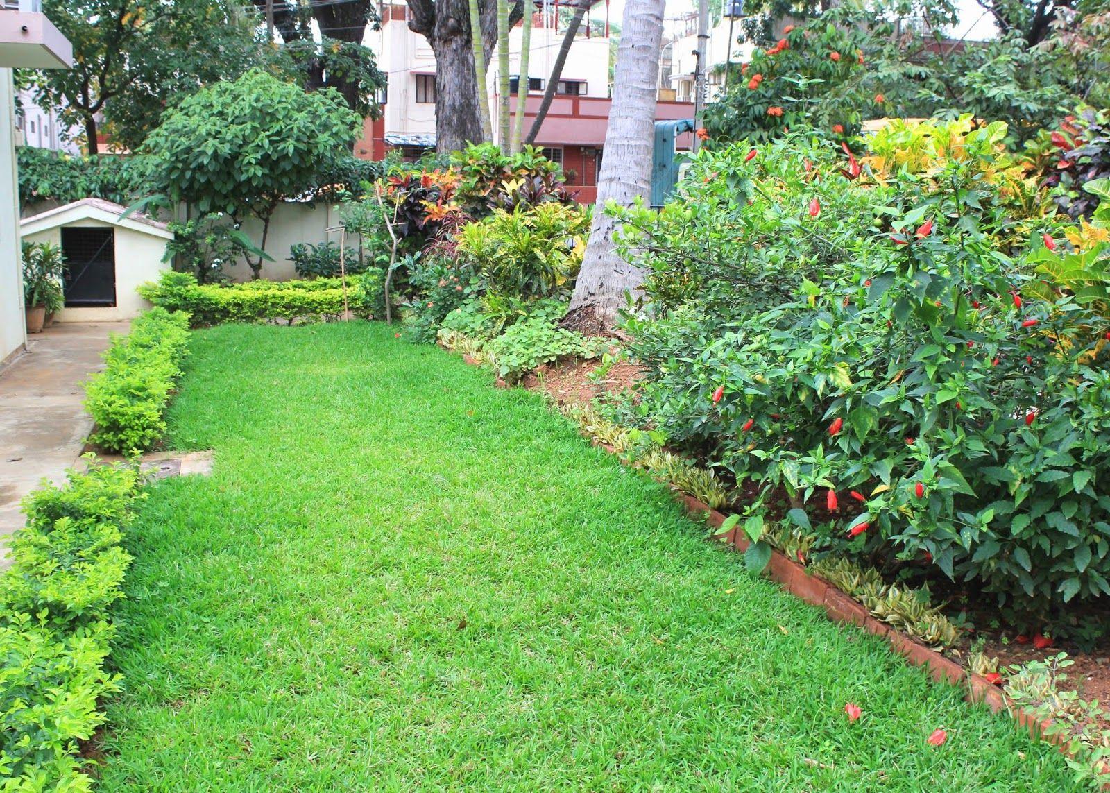 Red House Garden An Indian Garden Garden planning
