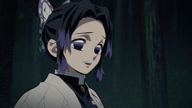 5 Shinobu Kocho Moments - Kimetsu no Yaiba (Demon Slayer: Kimetsu no Yaiba)  — The Geek Media Revue   Anime demon, Slayer anime, Demon