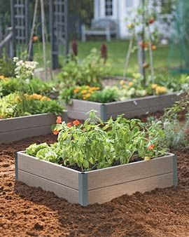 8dfdc683735dc8812ec8d035201db4c1 - Why Do Gardeners Use Raised Beds
