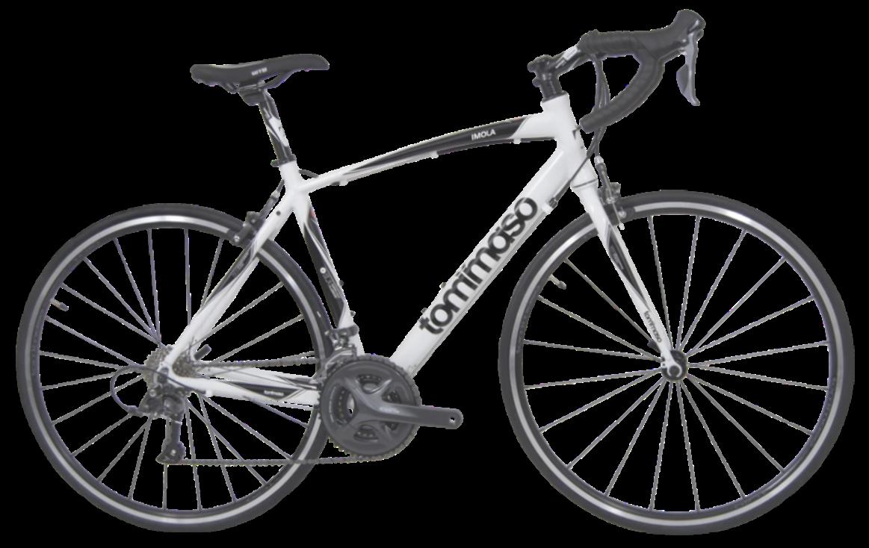 Tommaso Imola Best Road Bike Value Tommasobikes Best Road