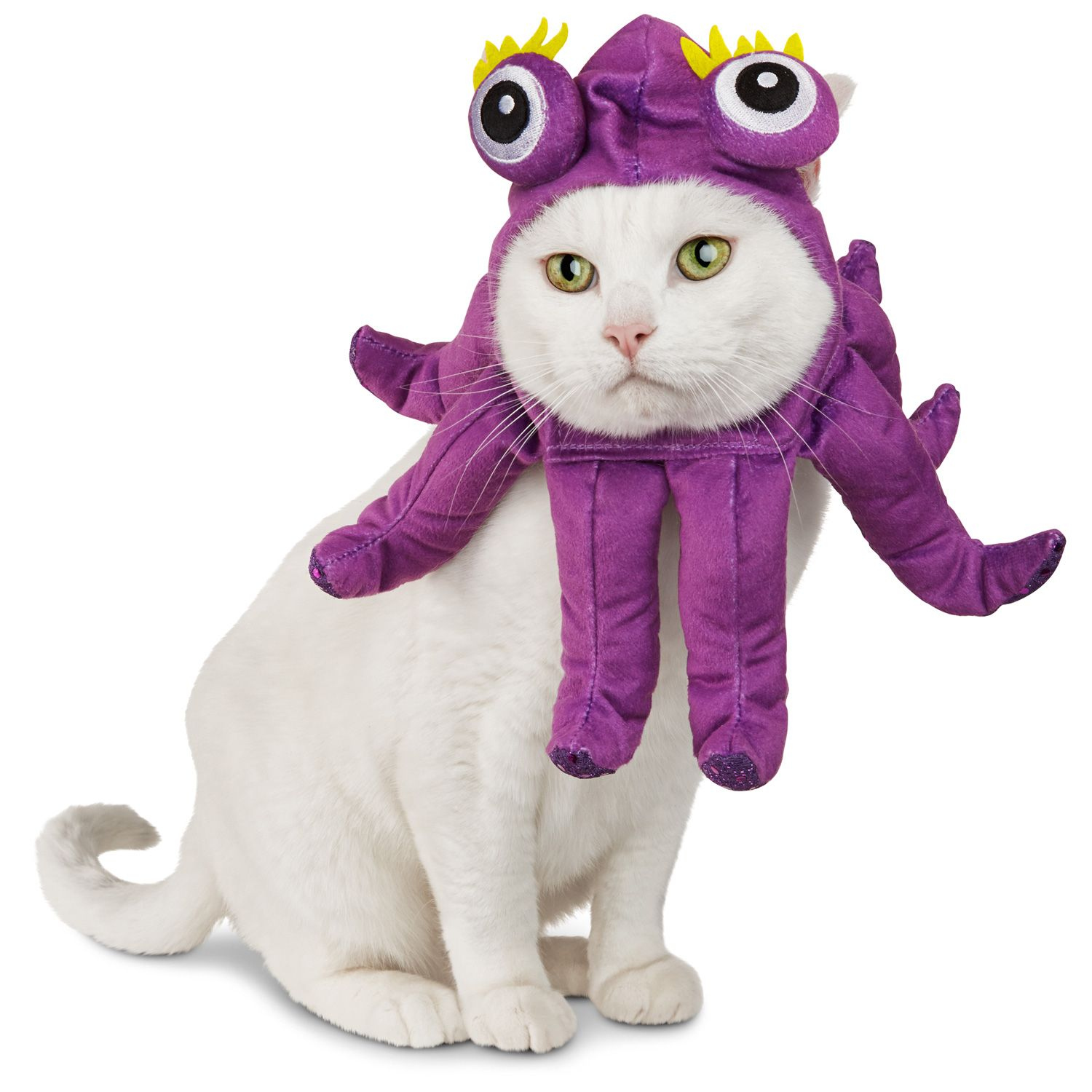 15 pet halloween costumes that are a million times cuter than yours - Halloween Costumes For Kittens Pets