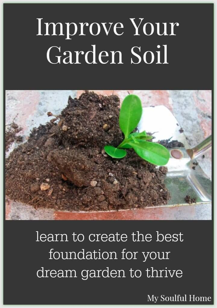 Best U0026 Easiest Way To Improve Soil