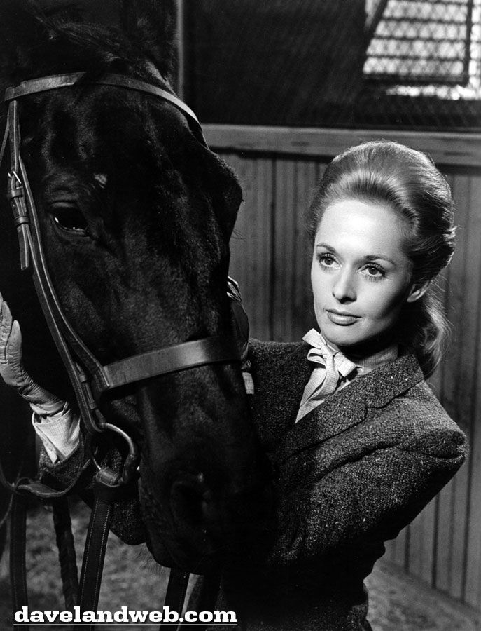 """forio"""" and 'tippi' in alfred hitchcock's """"marnie""""   Tippi hedren,  Hollywood, Alfred hitchcock movies"""
