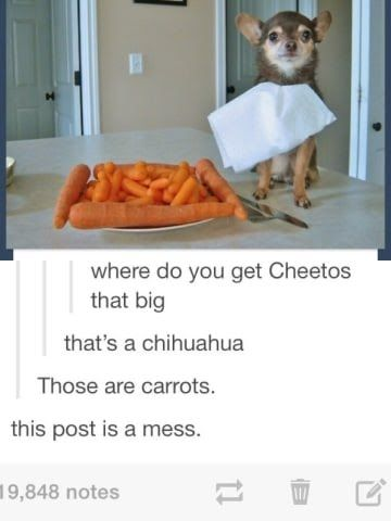 21 Times Tumblr Was An Absolute Disaster