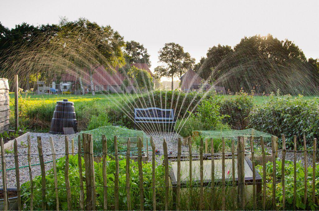 Organic Gardening In Florida