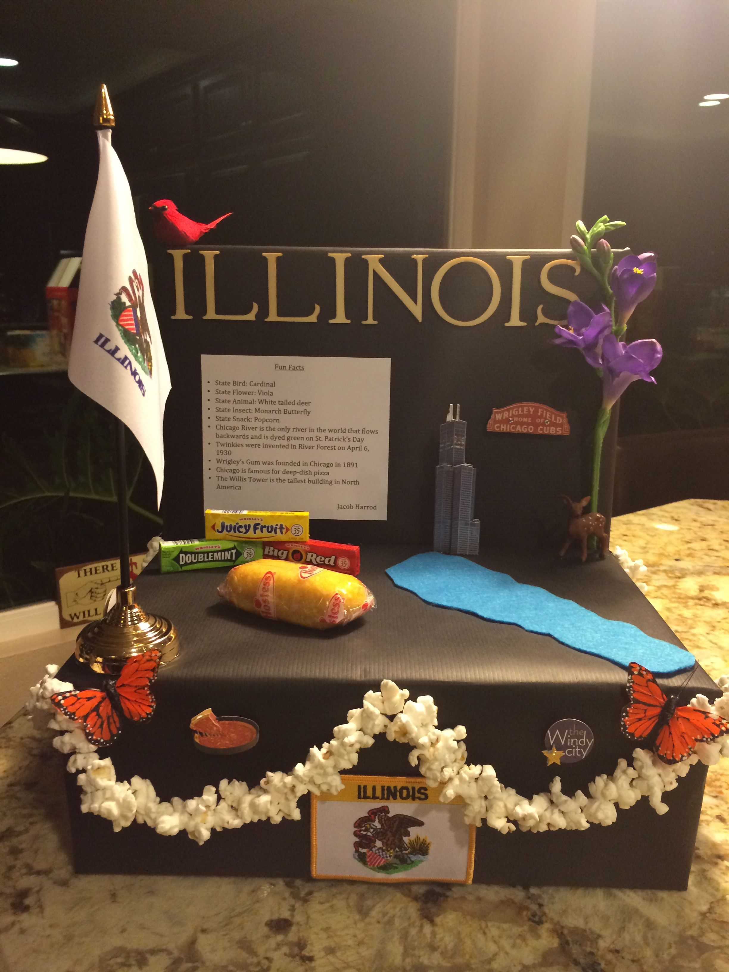 5th Grade Geography: Illinois State Float School Project